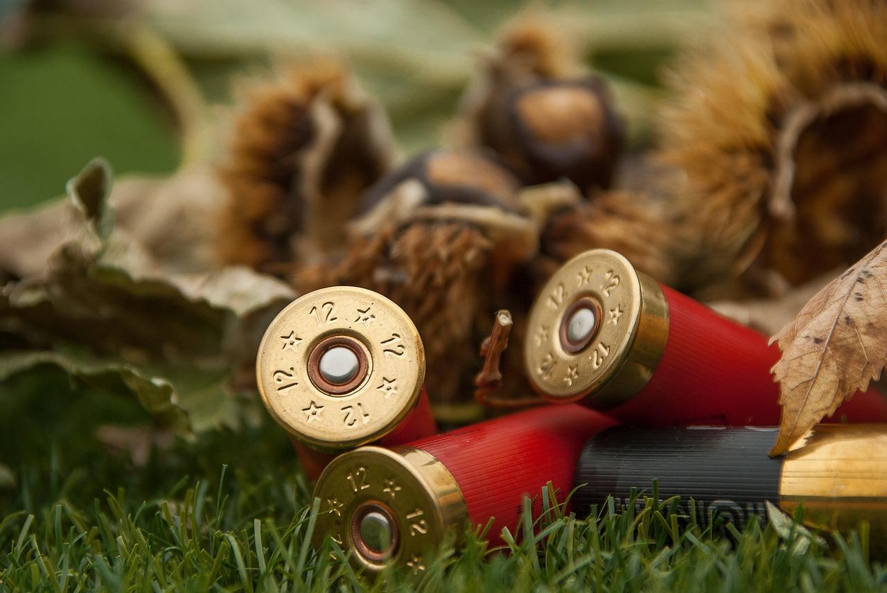 Hunting Season 2017